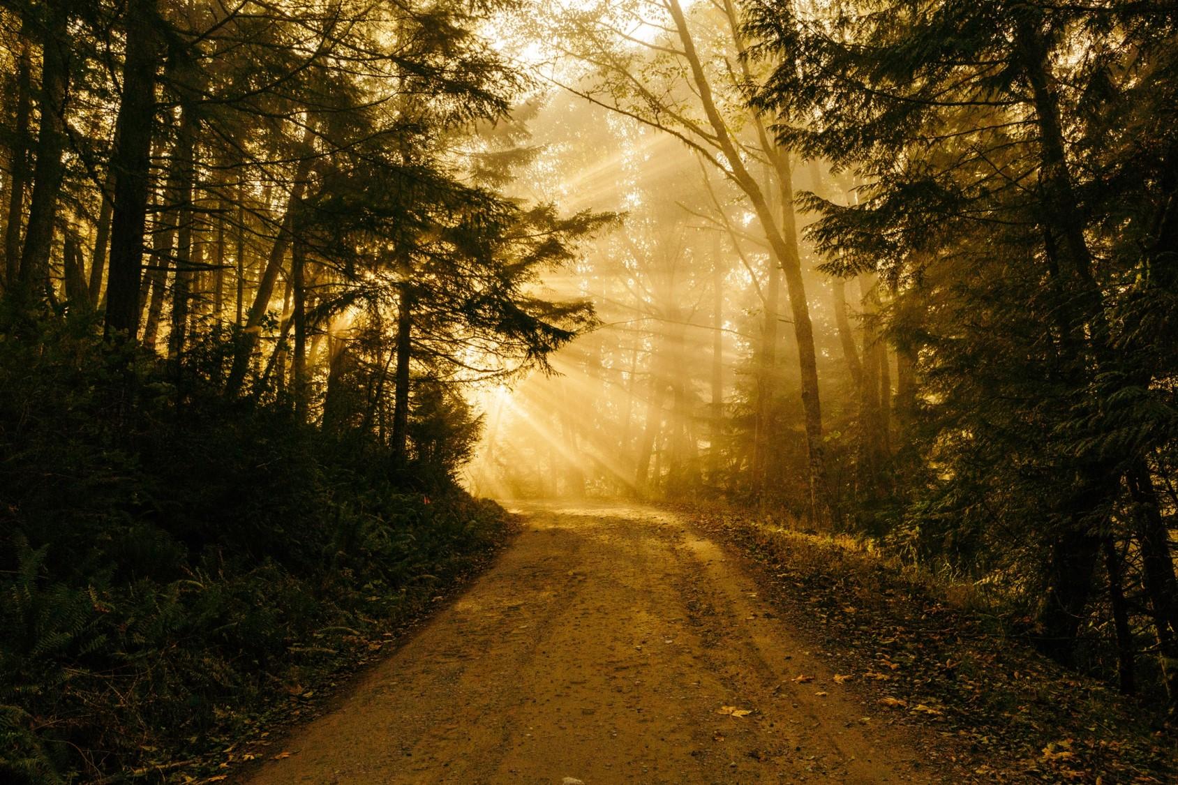 Der lange Weg zum Selbst